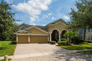 Single Family for sale in 17314 CHENANGO LANE, Tampa, FL, 33647