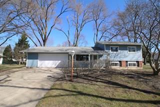Single Family en venta en 460 East Thacker Street, Hoffman Estates, IL, 60169