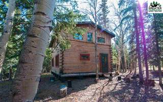 Single Family for sale in NHN LIGNITE ROAD, Healy, AK, 99743