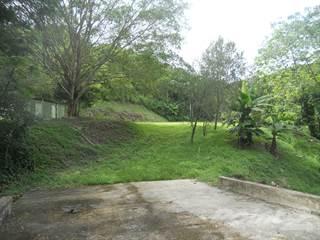 Land for sale in Bo Hoconuco Bajo San Germán, Hoconuco Bajo, PR, 00683