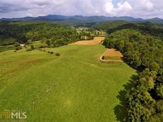 Photo of 0 Whitepath Rd, 30540, Gilmer county, GA
