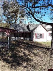 Single Family for sale in 4191 E HWY 206, Everton, AR, 72633