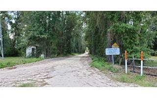 Single Family for sale in 9844 SE 159TH AVE, White Springs, FL, 32096