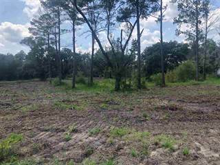 Land for sale in 5119 Bryant Russell, Perry, FL, 32348