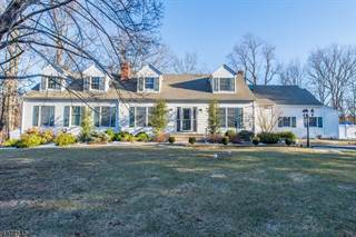 Single Family for sale in 49 E VALLEY BROOK RD, Greater Long Valley, NJ, 07853