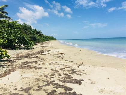 Lots And Land for sale in White sand beach lot, Gaspar Hernandez, Espaillat