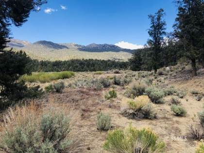 Lots And Land for sale in 96484 Kennedy Meadows Rd, Inyokern, CA, 93527