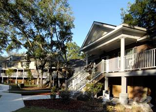 Apartment For Rent In Pinecrest Greene   1 Bedroom, Charleston, SC, 29407