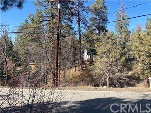 Lots And Land for sale in 980 Butte, Big Bear City, CA, 92314