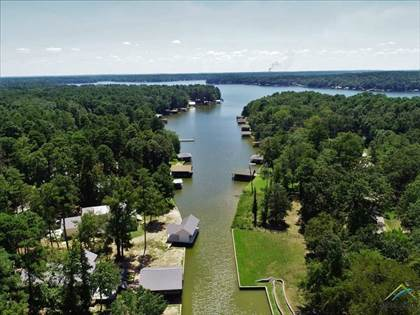 Residential Property for sale in 375 Whispering Pine Trail, Mount Vernon, TX, 75457