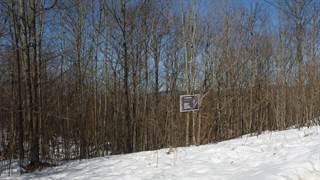 Land for sale in 40 Ch. Oakview, La Peche, Quebec