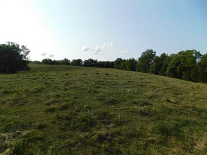 Lots And Land for sale in New Columbus Road, Corinth, KY, 41010