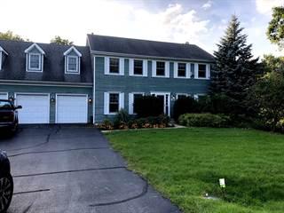 Single Family for sale in 25050 West Megan Court, Lake Villa, IL, 60046