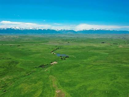 Farm And Agriculture for sale in 166 Cooney ROAD, Roberts, MT, 59070