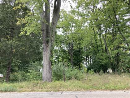 Lots And Land for sale in 627 E Saint Joseph Street, Paw Paw, MI, 49079