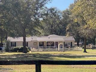 Farm And Agriculture for sale in 7256 NW 11th Street, Ocala, FL, 34482