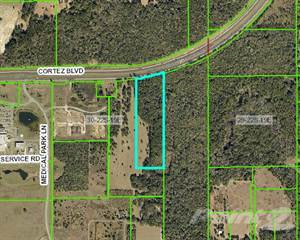 Comm/Ind for sale in 0 Cortez Blvd., South Brooksville, FL, 34601
