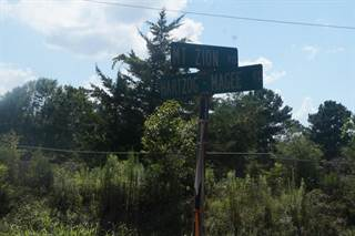 Land for sale in 00 Hartzog Magee Rd., Prentiss, MS, 39474