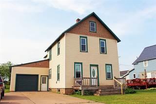 Single Family for sale in 449 W Division, Ishpeming, MI, 49849