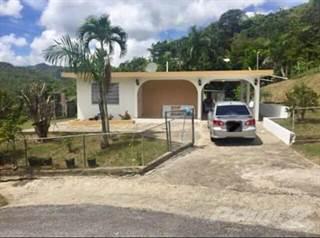 Residential Property for sale in Bo. Coamo Arriba, Coamo PR, Coamo, PR, 00769