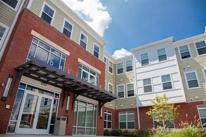 Apartment for rent in 113 James Street, Woodbridge Township, NJ, 08861