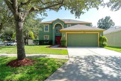 Residential Property for sale in 19249 WOOD SAGE DRIVE, Tampa, FL, 33647
