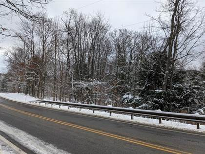 Lots And Land for sale in 00 N. Brookland Road, Greater Ulysses, PA, 16923