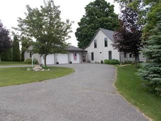 Single Family for sale in 3536 Karen Street, Hart, MI, 49420