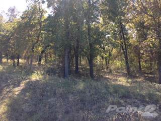 Land for sale in Lot 46 Powder Ridge, Gonzales, TX, 78629