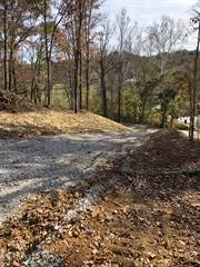 Farm And Agriculture for sale in 971 Hwy 577, Annville, KY, 40402