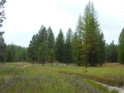 Lots And Land for sale in Tract 5a Pomeroy Trail, Eureka, MT, 59917