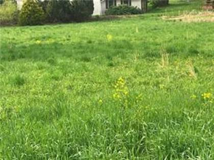 Residential Property for sale in 266 S Rebecca St Lot - 3, Saxonburg, PA, 16056