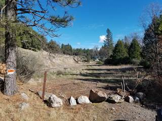 Other Real Estate for sale in 0 Van De Hei Ranch Rd, Pioneer, CA, 95666