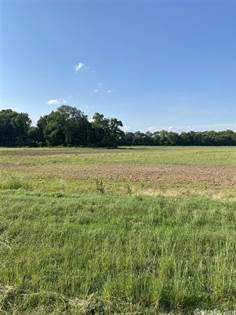 Farm And Agriculture for sale in 19099 Wayne Road, England, AR, 72046