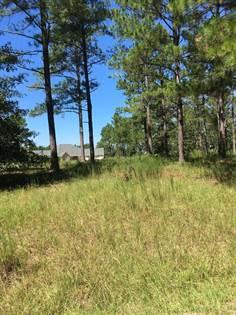 Lots And Land for sale in Lot # 85 Foxfire Dr, Vidalia, GA, 30474