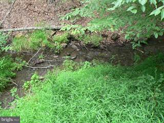 Land for sale in WATERLINE DRIVE, Upper Tract, WV, 26866