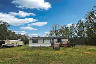 Residential Property for sale in 10635 Hennessey Avenue, Hastings, FL, 32145