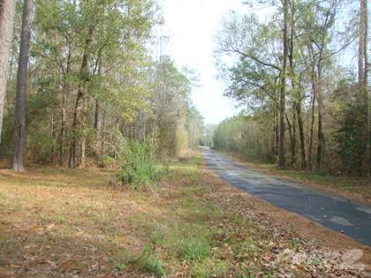 Residential Property for sale in 1060 County Road 721, Buna, TX, 77612