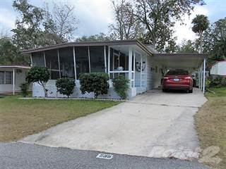 Residential Property for sale in 235 Prince Drive, Leesburg, FL, 34748