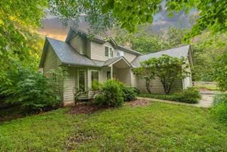 Single Family for sale in 455 DEER DR, Ruckersville, VA, 22968
