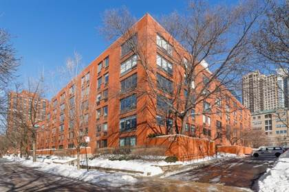 Residential Property for sale in 1143 South Plymouth Court 303, Chicago, IL, 60605