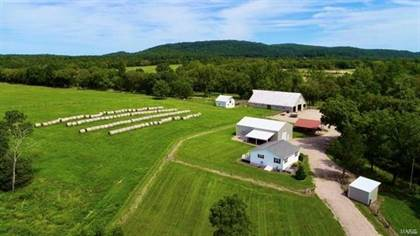 Farm And Agriculture for sale in 1066 Madison 526, Fredericktown, MO, 63645