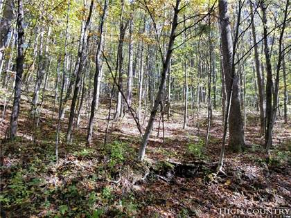Lots And Land for sale in Lot 17-20 Old Chestnut Mountain Road 1720, Newland, NC, 28657