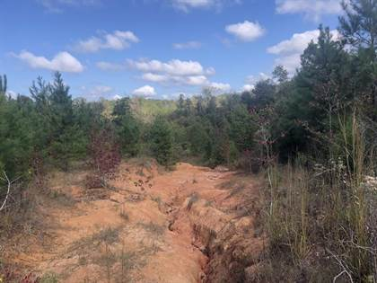 Lots And Land for sale in 0000 Zion Hill Church Rd, Silver Creek, MS, 39663