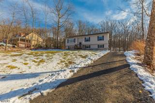 Single Family for sale in 23 Fawn Run, Montague, NJ, 07827