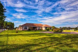 Single Family for sale in 8899 85th St, Newberry, FL, 32669