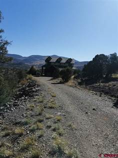 Residential Property for sale in 160 Marmot Lane, South Fork, CO, 81154