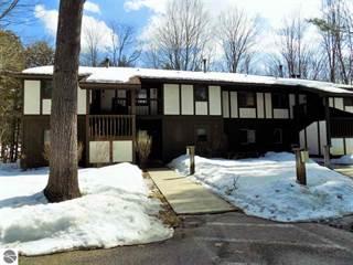 Condo for sale in 6885 Pinebrook Drive 2, Greater Cedar River, MI, 49615