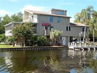 Single Family for sale in 4227 LAKE AVENUE, Palm Harbor, FL, 34684