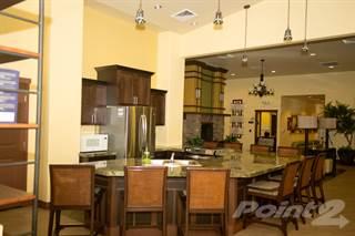 Apartment for rent in Aeroterra 1 - Aeroterra II - Orenco, Phoenix, AZ, 85006